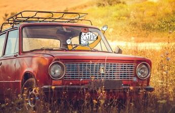 Zakoupení novějšího auta.