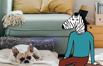 Vylepšení komfortu bydlení