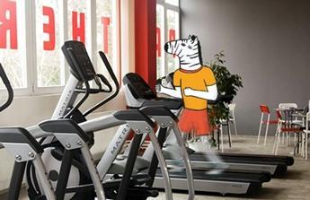 vybavení tělocvičny