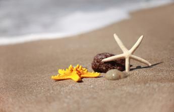 Vysněná dovolená u moře