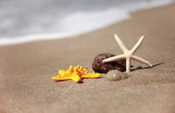 dovolena u more :-)