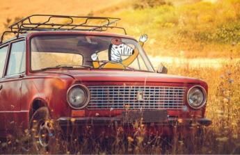 První auto pro dceru